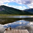 Stock Photo: Wild ducks and Vermillion Lake reflection