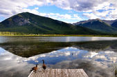 Wild ducks and Vermillion Lake reflection — Stock Photo