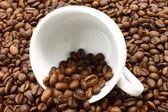 White cup and coffeebeans — Stockfoto