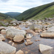 Wicklow mountains — Stock Photo