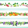 Stock Vector: Fruits diet border