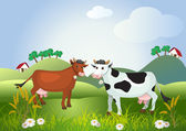 Two cows on meadow fields — Stock Vector