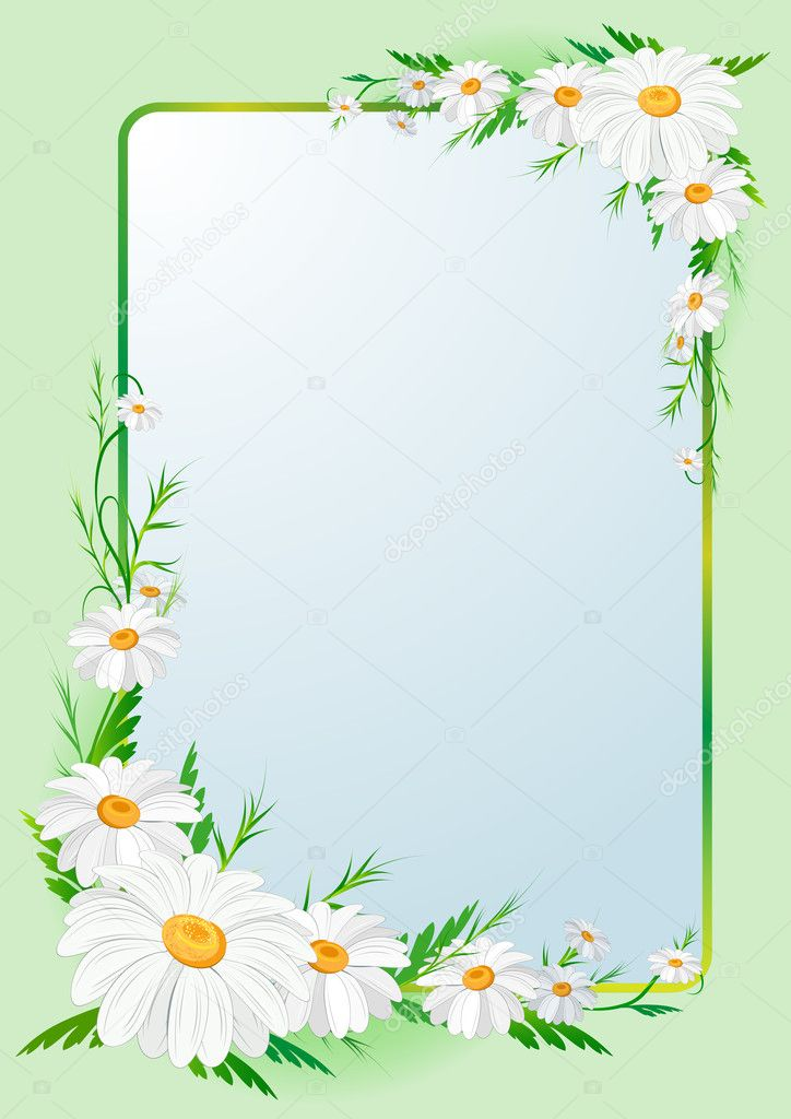 Nice vector border frame with daisies — Stock Vector #7371353