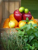 Organic fruit and herbs — Stock Photo