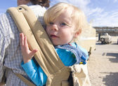 Cute toddler in baby carrier — Stock Photo