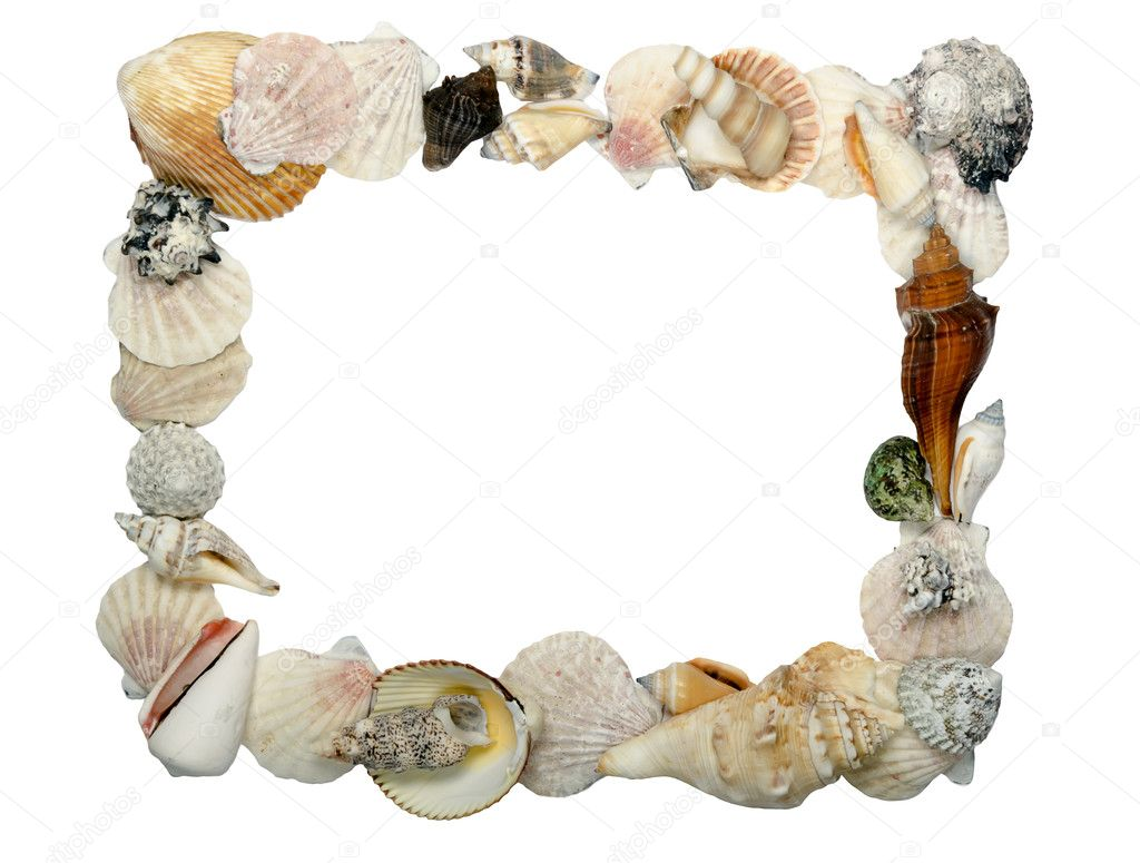 Frame made of shells, place for text  Stock Photo #7572686