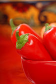 Variedad de chiles — Foto de Stock