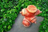 červený požární hydrant a zelenými listy — Stock fotografie