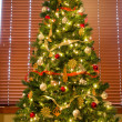 Full Christmas Tree in Front of Blinds — Stock Photo