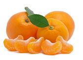 Fresh mandarines — Stock Photo