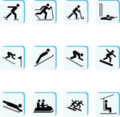 Winter Sports Icons — Stock Photo