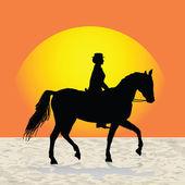 Entrenador de caballos de mujer — Foto de Stock