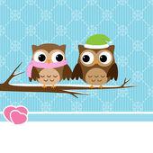 Winter owl couple — Stock Vector
