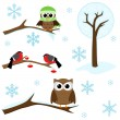 Set of winter elements — Vector de stock