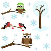 Uppsättning vinter element — Stockvektor