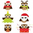 Cristmas owls — Stock Vector