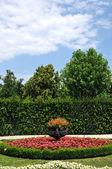Garden — Foto Stock