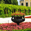Imperial gardens, Schonbrunn (Vienna, Austria) — Stock Photo