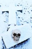 ölüm kavramı — Stok fotoğraf
