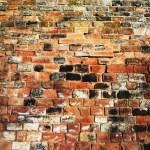 Brick wall — Stock Photo #7218088