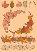 Set of autumn leaves decoration. — Stock Vector