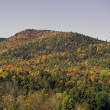 Stock Photo: Fall in the Adirondack Mountains