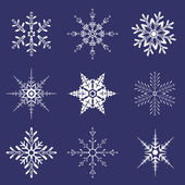 Various shapes of snowflakes — Stock Vector