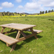 Wooden bench in the meadows — Stock Photo