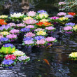 Carp Pond Artificial Water Lillies Jade Buddha Temple Jufo Si Sh — Stock Photo