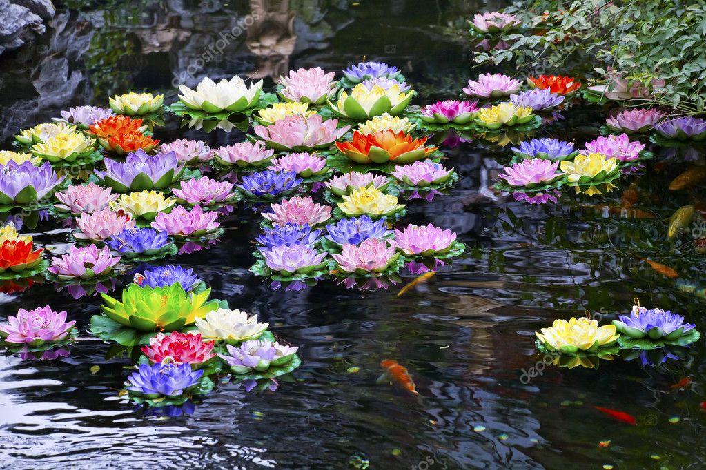 Фото водоемы искусственные цветы