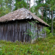 Stock Photo: Peat shed