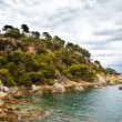 Costa Brava landscape near Lloret de Mar, Catalonia, Spain. — Stock Photo