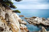 Costa Brava landscape near Lloret de Mar, Catalonia, Spain. — Stock Photo