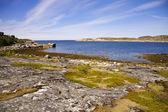 Norveç fiyordu harika manzarasını — Stok fotoğraf