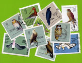 Stamp with birds — Stock Photo