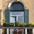 Window with stone decoration in Padua — Stock Photo