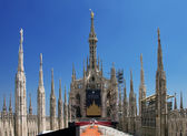 Roof of the cathedral in Milan — Stock Photo