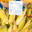 Corn — Stock Photo #7504589