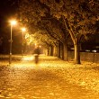 Path at night — Stock Photo