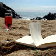 Sunny day at the beach with the book. — Stock Photo