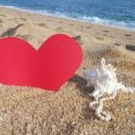 Valentines surprise — Stock Photo