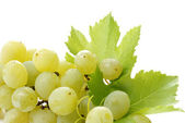 Grape detail — Stock Photo