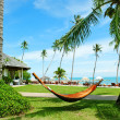 Stock Photo: Hammock between palm trees on tropical beach
