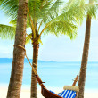 Stock Photo: Empty hammock between palm trees