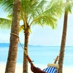 Пустой гамак между пальмовые деревья — Стоковое фото