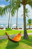 Empty hammock between palm trees — Stok fotoğraf