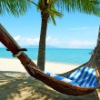 Empty hammock between palms trees — Stock Photo #7170412