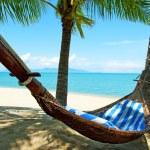 Empty hammock between palms trees — Stock Photo