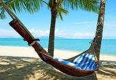 Empty hammock between palms trees — Stock Photo