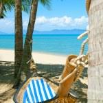 Empty hammock between palms trees at sandy beach — Stock Photo